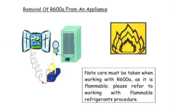 removal of r600a from an appliance